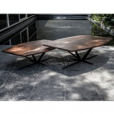 Agave Coffee Table