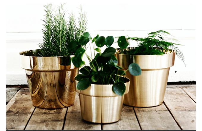 Skultuna, Flower Pot, Monica Forster, polished brass, gardening, hostess, gift