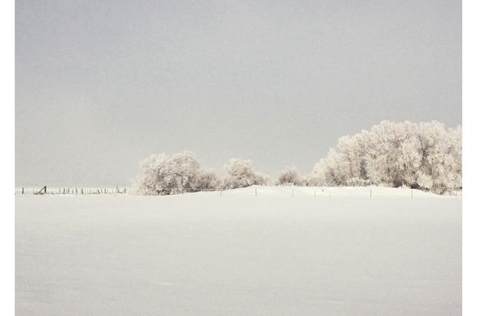 winter whites suite ny white furniture cream modern design trees